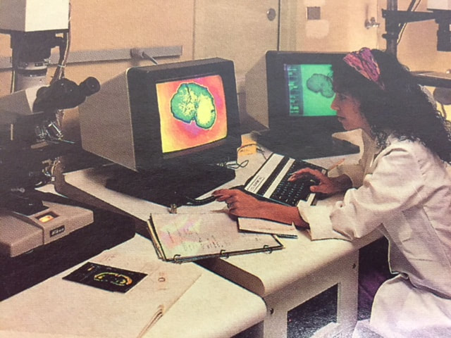 scientist at computer